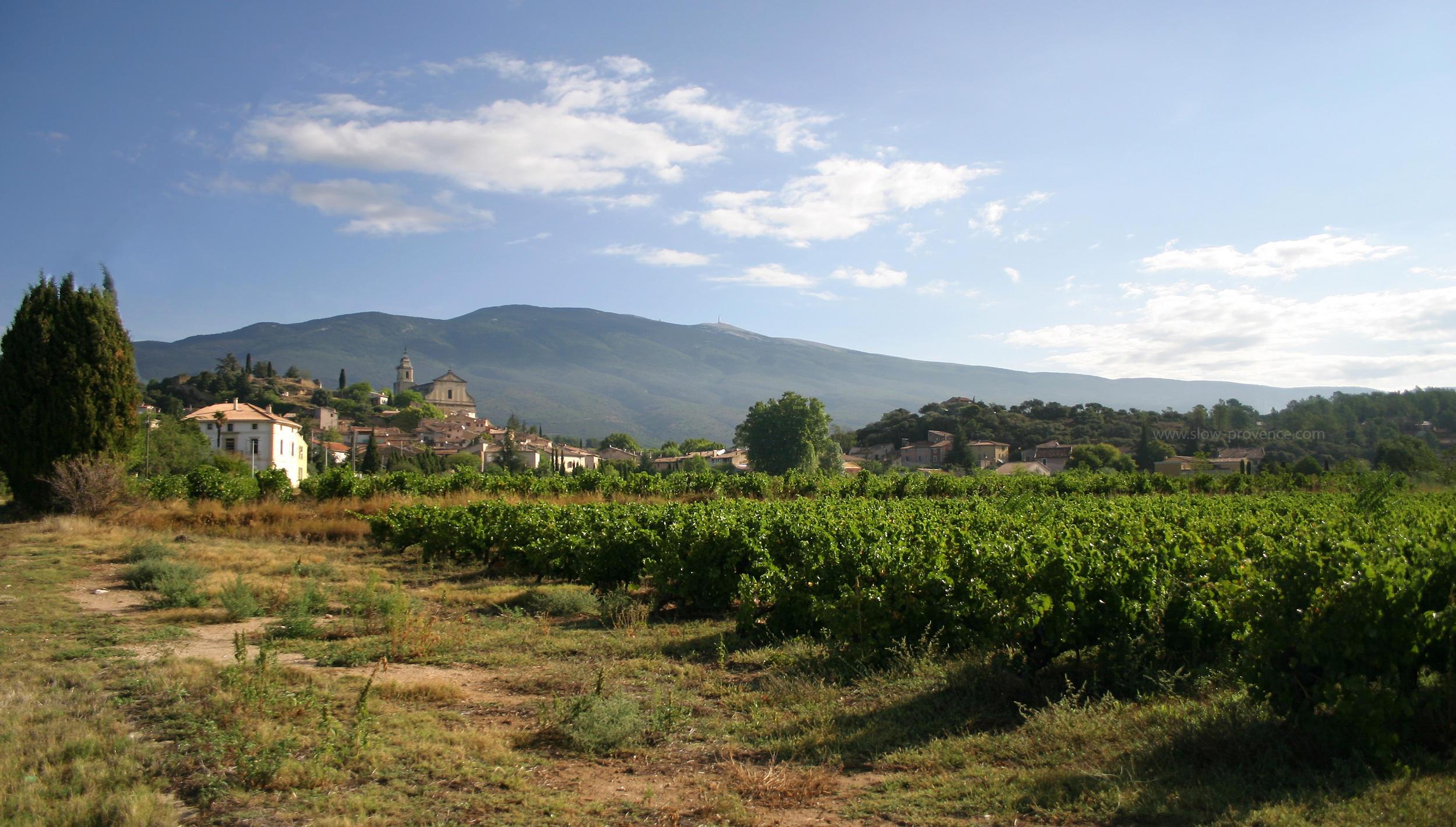 Bédoin, un village authentique et animé au pied du Mont Ventoux