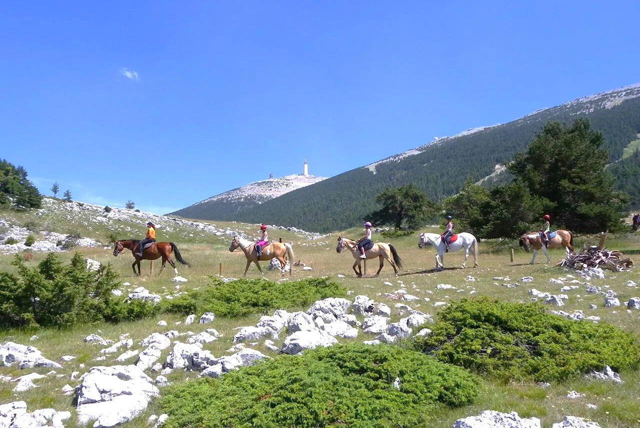 The Mont Ventoux region on horseback